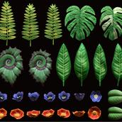 Foliage Atlas